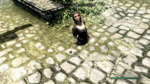 Skyrim screenshots dump 2011