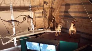 Velociraptor skeletons and animatronic velocity raptors. Sadly I did not have time to do the Chris Pratt/Jurassic World thing