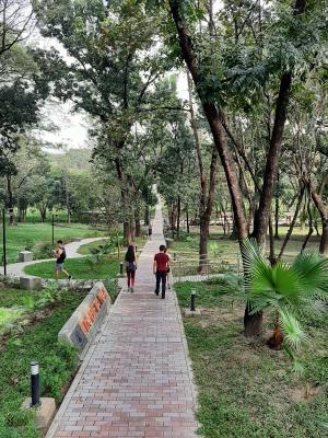 Saturday Morning at the University