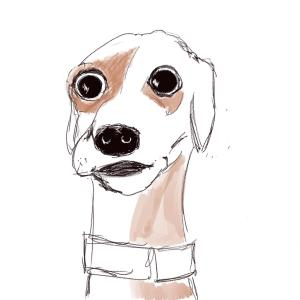 Some kind of stunned dog #sketchdaily 104/365